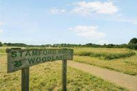 Stamford Brook Woodland