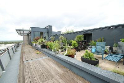 Roof Terrace 3
