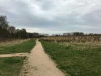 Wildlife Corridor 2