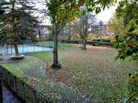 Bowdon Garden 4