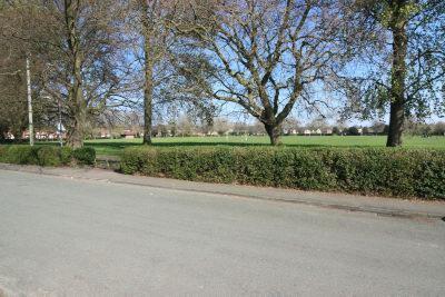 Views facing Ashton Park