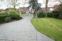 Front Garden + Driveway