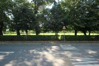 Views over Ashton Park